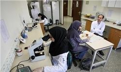 علل رشد نایافتگی علمی زن مسلمان در تاریخ