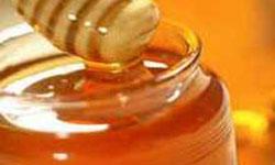 53 هزار کلونی زنبور عسل در ایلام فعال است