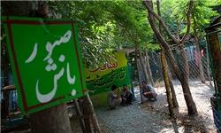 ساماندهی کمپهای ماده 15 و 16 در استان البرز/ مشکلات مربوط به اختلالات روحی و روانی گریبان معتادان را گرفته است
