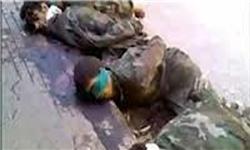 جنایت جدید القاعده در سوریه + فیلم