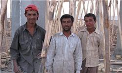 از اشغال فرصتهای شغلی توسط مهاجرین غیرقانونی جلوگیری میشود