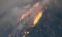 بیش از ۳ هزار کیلومتر از شمال «کلرادو» در آتش سوخت