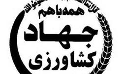 1300 میلیارد ریال خسارت به بخش کشاورزی مناطق سیلزده سیستان و بلوچستان