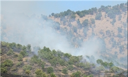 آتش ارتفاعات شیراز مهار شد