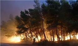 پارک ساحلی ارس آتش گرفت