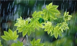 بارش تگرگ و وقوع رگبارهای پراکنده در آسمان کرمانشاه