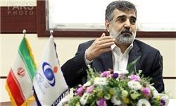 کمالوندی: تصمیم بزرگی پیش روی ۱+۵ است/ایران با فشار و تهدید عقب نمینشیند