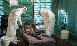 آمریکا سابقه زیادی در انتشار ویروسهای مهلک دارد/شاید حقیقت ابولا سالها بعد مشخص شود