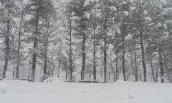 ارتفاعات خلخال سفیدپوش شد