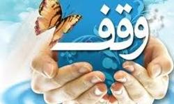 وقف جدید همزمان با سوگواره یاس نبوی در بویین زهرا