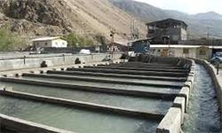 توسعه بیرویه مزارع پرورش ماهی در رودخانههای بویراحمد و دنا / مرگ تدریجی اکوسیستم رودخانههای بویراحمد / فشارهای سیاسی برای صدور مجوز طرحهای پرورش ماهی