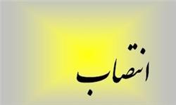 اعضای موظف هیات مدیره بیمه ایران منصوب شدند