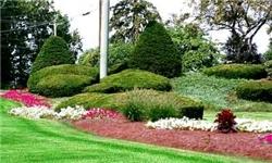 اختصاص یک هزار و 600 میلیارد ریال هزینه جهت توسعه فضای سبز مشهد