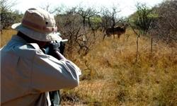 دستگیری شکارچیان و کشف و ضبط 14 قبضه سلاح غیرمجاز در ساری
