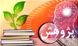 کسب مقام برتر علمی و پژوهشی کشور توسط دانشآموزان تویسرکان