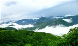 سرانه جنگل در آذربایجانشرقی 520 مترمربع است