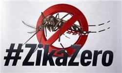 کنترل مسافران در فرودگاههای روسیه برای جلوگیری از انتشار ویروس «زیکا»