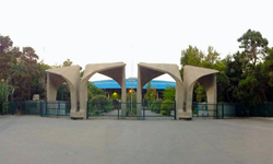 وکلای ملت! لااقل شما به داد اساتید متعهد دانشگاه تهران برسید!/ وزیرعلوم جرات دخالت در مسائل دانشگاه تهران را ندارد