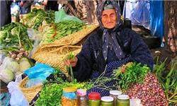 بانک اطلاعات زنان سرپرست خانوار خراسان جنوبی تهیه میشود