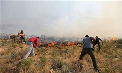 آتش سوزی در پارک ملی بمو شیراز