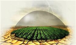 خسارت 15 میلیارد تومانی به محصولات باغی در کردستان/ رتبه برتر کردستان در بیمه اراضی گندم