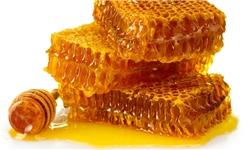 فقدان کارگاه عرضه و بستهبندی عسل تولیدی در گلستان
