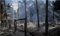 روستاهای مسلمانان روهینگیا در آتش میسوزند/ کمپین خشونت متوقف نشده است