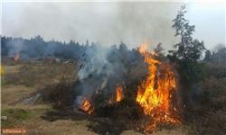 روستاهای گلستان و آتشی که در این نزدیکی است/ دهیاران گلستانی در خط مقدم مقابله با حریق