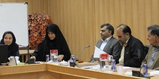کارگاه آموزشی نحوه مشارکت در تدوین استانداردهای بین المللی برگزار شد