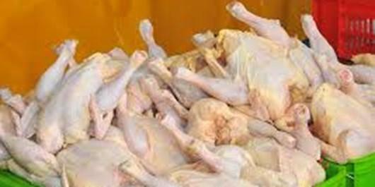 قیمت مرغ گرم در زنجان به 7 هزار و 300 تومان رسید