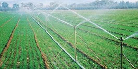 اجرای سیستم آبیاری تحت فشار در 150 هکتار