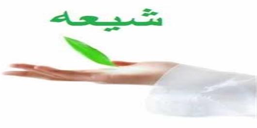 متکلمان شیعی و گسترش علم کلام در دائره المعارف قرآن لیدن