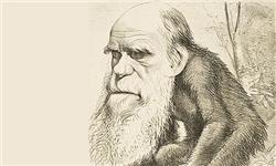 نقد و بررسی انسانشناسی داروین براساس حکمت متعالیه