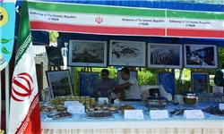 آغاز نخستین جشنواره صنایعدستی، غذا و بازیهای بومی در بوشهر