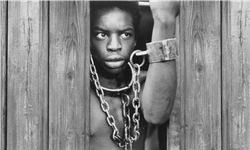 «ریشهها»ی بردهداری به شیوه آمریکایی/ کتابی که رهبر انقلاب مغتنم دانستهاند