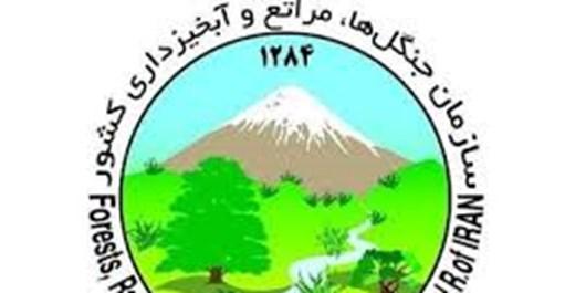 62 مورد پیشگیری از تصرف اراضی ملی زنجان انجام شده است