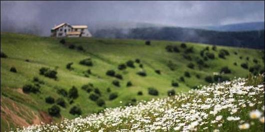 برپایی چادر در مناطق کوهستانی برای پایش حیات وحش در مازندران