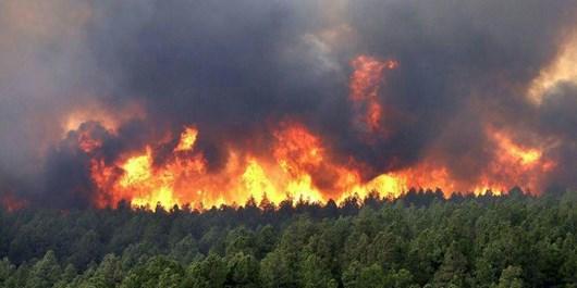 آتشسوزی منطقه «جهاننما» کردکوی مهار شد/ 3 هکتار از مراتع و جنگلهای دستکاشت در آتش سوخت