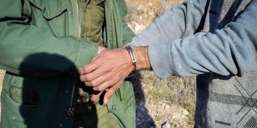دستگیری 224 متخلف زیستمحیطی در چهارمحال و بختیاری