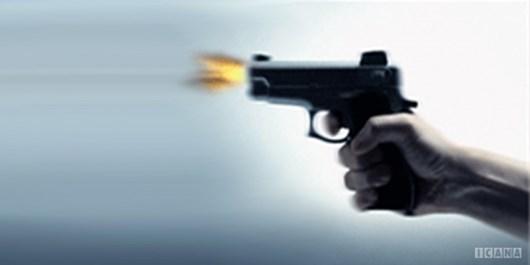 دستگیری سارق با شلیک پلیس در شهرکرد