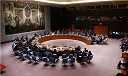 فرانسه خواستار برگزاری نشست اضطراری شورای امنیت درباره عملیات ترکیه در عفرین شد