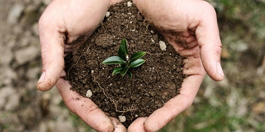 برگزاری کارگاه آموزشی خاک و محیط زیست در شهرستان ملارد