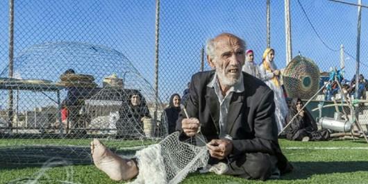 هفتمین جشنواره بازیهای بومی محلی در شهرستان دشتی برگزار شد