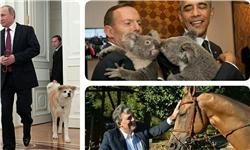 حیواناتی که ابزار دیپلماسی شدند+تصاویر