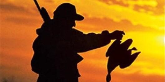 شکارچیان پرندگان در زنجان دستگیر شدند