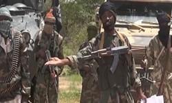 پلیس نیجریه از بازداشت بیش از 20 نفر از عناصر «بوکو حرام» خبر داد