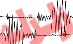 زلزله 4.1 ریشتری ریگان کرمان را لرزاند