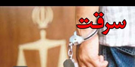 سارق معتاد طلاجات صاحبخانه آشنا را ربود