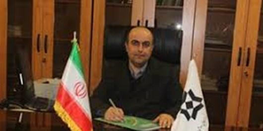 خرید 51 هزار تن گندم مازاد بر نیاز کشاورزان در زنجان/ 50 درصد مطالبات یک هفتهای پرداخت میشود