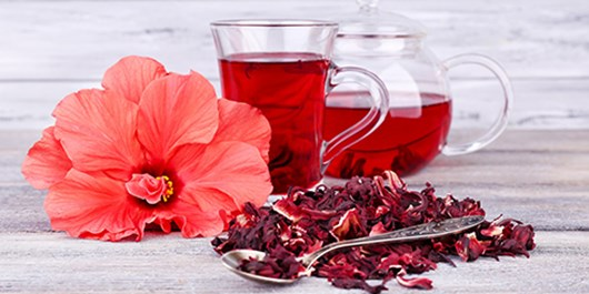چای ترش چربیسوز عالی/ دیابتیها چای ترش بنوشند